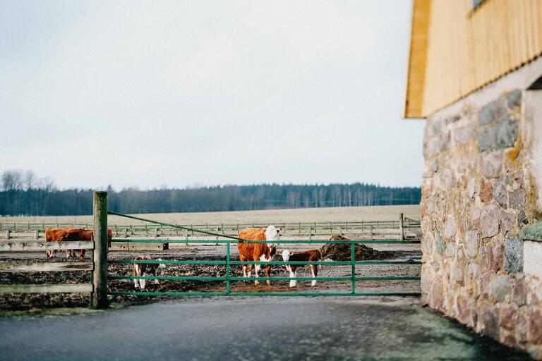 Gård i Jönköping